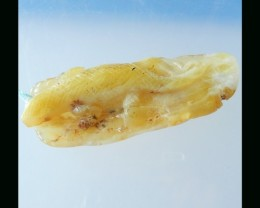 Yellow Opal Lizard Carving Pendant Bead - 67x27x10 MM
