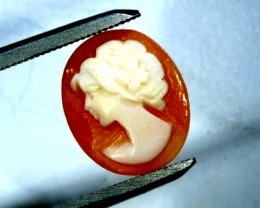CONCH SHELL CAMEO  2.40 CTS.  CG-1587