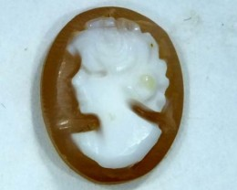 CONCH SHELL CAMEO 2.00  CTS.  CG-1606