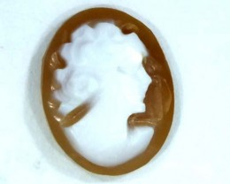 CONCH SHELL CAMEO 1.60  CTS.  CG-1608