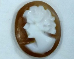 CONCH SHELL CAMEO 1.95  CTS.  CG-1609