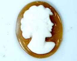 CONCH SHELL CAMEO  1.15 CTS.  CG-1641