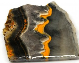 153.2 CTS BUMBLE  BEE JASPER ROUGH SLAB -INDONESIA [F5626 ]