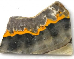 149.2 CTS BUMBLE  BEE JASPER ROUGH SLAB -INDONESIA [F5671 ]