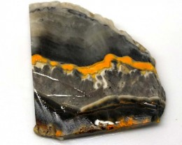 151.1 CTS BUMBLE  BEE JASPER ROUGH SLAB -INDONESIA [F5693 ]