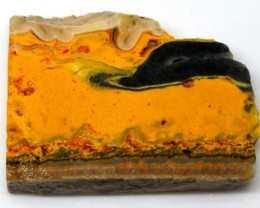 145 CTS BUMBLE  BEE JASPER ROUGH SLAB -INDONESIA [F5767 ]
