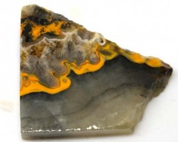 119 CTS BUMBLE  BEE JASPER ROUGH SLAB -INDONESIA [F5781 ]