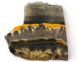 163.3 CTS BUMBLE  BEE JASPER ROUGH SLAB -INDONESIA [F5793 ]