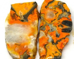 207 .2 CTS BUMBLE  BEE JASPER ROUGH SLAB -INDONESIA PAIR [F5798 ]