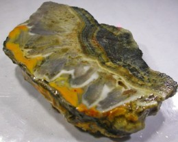 57.2 CTS BUMBLE  BEE JASPER ROUGH SLAB -INDONESIA [F5833]