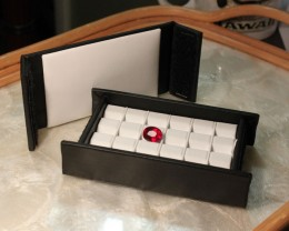Wholesaler's Carry Case - Compact/Cool