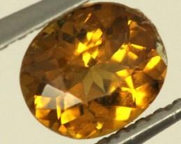 0.8 CTS GOLDEN YELLOWISH MALI GARNET VVS SP79