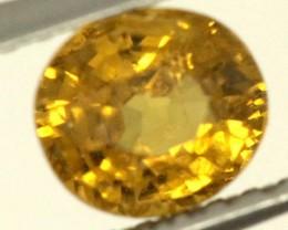 0.6 CTS GOLDEN YELLOWISH MALI GARNET VVS SP83