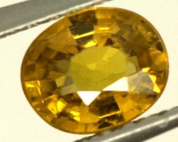 0.6 CTS GOLDEN YELLOWISH MALI GARNET VVS SP84