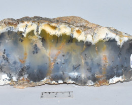 Dentritic Chalcedony Merlinite Polished  Australia (GR128)