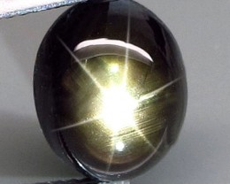 7.50 Carat Thailand Black Star Sapphire - Gorgeous