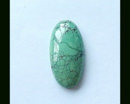 19.5 Cts Turquoise Cabochon