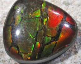 5.3 CTS NEON BRIGHT AMMOLITE DOUBLET [MGW4700]3