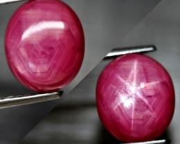 7.06 Carat Star Ruby - Lovely