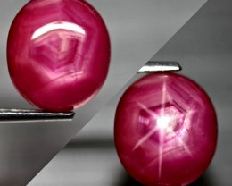 6.65 Carat Vibrant Pink Star Ruby - Superb