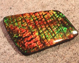 $$$ REDUCED $$$ FLAWLESS COLORFUL DRAGONSKIN LARGE Natural Ammolite Gem