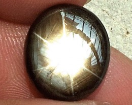 CERTIFIED - 13.23 Carat Thailand Black Star Sapphire