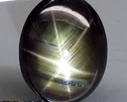 4.09 Carat Thailand Black Star Sapphire - Beautiful Stone