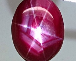 12.78 Carat Vibrant Star Ruby - Gorgeous