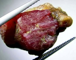 BURMA RUBY ROUGH RICH RED 26 CTS TBM-564