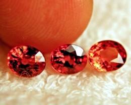 3.52 Tcw. Orange African Sapphires - 3 pcs. - 6.3mm
