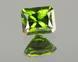 0.88 CT CHROME DIOPSIDE - MASTER CUT!