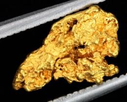 AUSTRALIAN  GOLD NUGGET    LGN 1272
