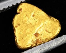 AUSTRALIAN  GOLD NUGGET    LGN 1276