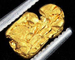 AUSTRALIAN  GOLD NUGGET    LGN 1279