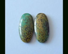 12cts Turquoise Cabochon Pair