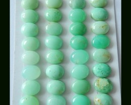 61cts Natural Chrysoprase Cabochons 32pca Green Gemstone