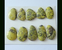 10 pcs Natural Serpentine Gemstone Cabochons Parcel