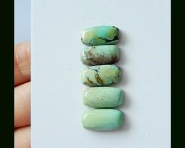 5 PCS Turquoise Cabochons Gemstone,22 Ct
