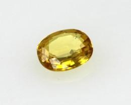 0.29cts Natural Australian Golden Sapphire Oval Cut