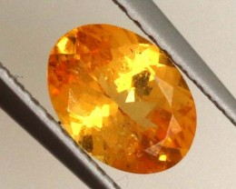 0.80 CTS GARNET FACETED STONE PG-1780