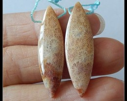 23 cts Natural Indonesian Coral Fossil Earring Beads(B180438)