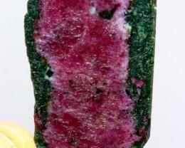 56 Carat Ruby Sliced Rough Var Zoisite From Kashmir Pakistan
