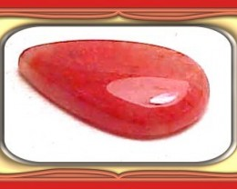 4.83ct  UTAH FOSSILIZED GEM RED HORN CORAL CAB *WoW $1NR*