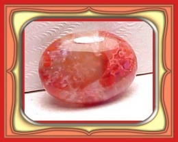 6.83ct  UTAH FOSSILIZED GEM RED HORN CORAL CAB *WoW $1NR*