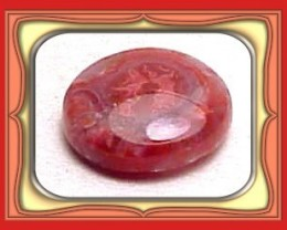 4.87ct  UTAH FOSSILIZED GEM RED HORN CORAL CAB *WoW $1NR*