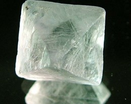 NATURAL FLUORITE CRYSTALS FROM ARGENTIA 7.9 CTS [MX516]
