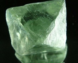 NATURAL FLUORITE CRYSTALS FROM ARGENTIA 14.2 CTS [MX521]