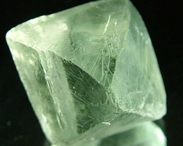 NATURAL FLUORITE CRYSTALS FROM ARGENTIA 18.7 CTS [MX530]