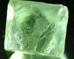 NATURAL FLUORITE CRYSTALS FROM ARGENTIA 9.8  CTS [MX541]