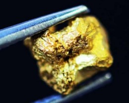 0. 42 Grams  AUSTRALIAN  Gold  Nugget LGN 1302